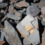 Black Mudstone