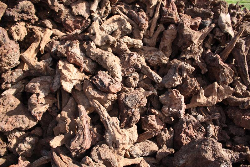 Mallee Root ( Out Of Stock )